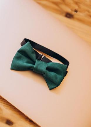 Краватка метелик vsetex зелена