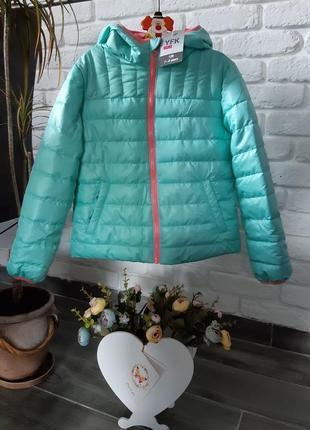 Курточка  (осень, весна)