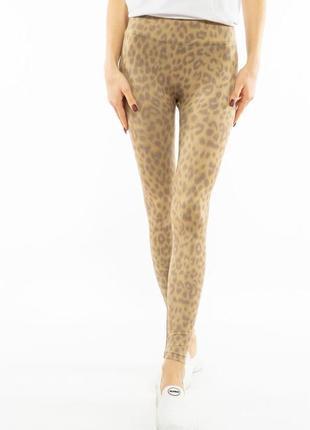 Лосины с леопардовым принтом 11pb70114
