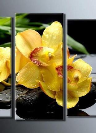 "Модульная картина ""желтые орхидеи"" размер 54х85 см"