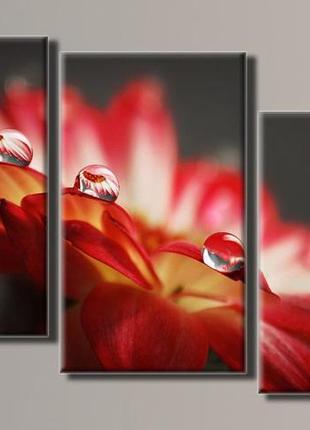 """Модульная картина """"капли на цветке"""" размер 60х95 см"""