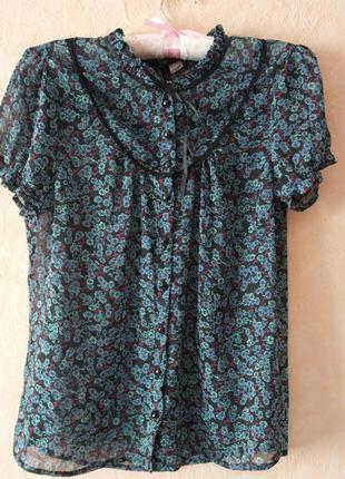 Блуза/сорочка/блузка/футболка
