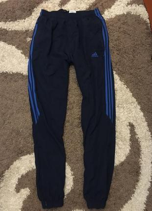 Сині спортивні штани adidas