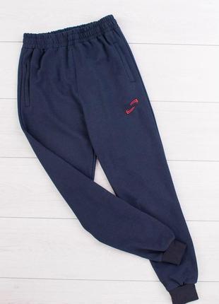 Мужские синие спортивные штаны брюки спортивки