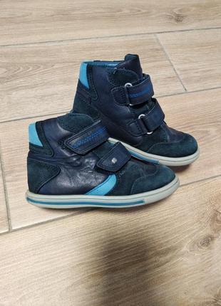 Кожаные ботинки ботиночки деми