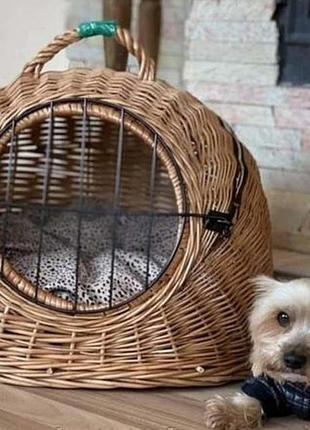 Спальне місце для тварин