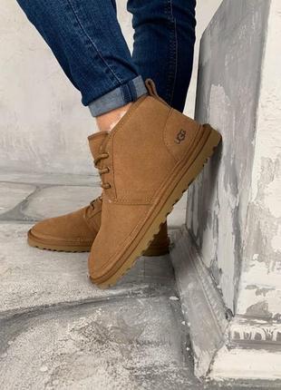 Ботинки угги мужские зимние