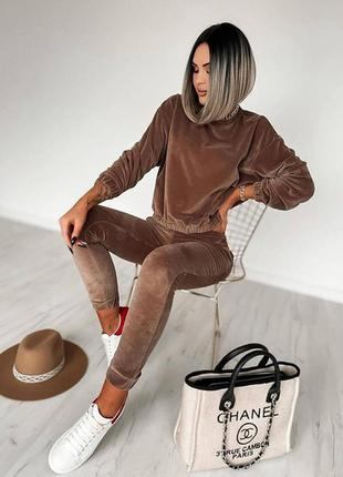 Велюровый прогулочный костюм