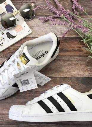 Классические сникеры adidas с фирменным дизайном бренда  sh2959  adidas