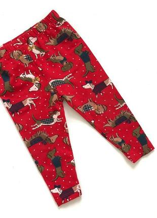 Коттоновые штанишки красные в принт