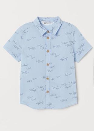 Рубашка для мальчика с короткими рукавами, тенниска h&m.