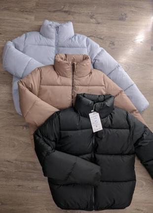 Куртка, зефирка, пуховик весна
