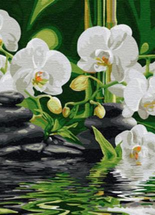 Картина по номерам спокойствие орхидей 50*40 gx29693