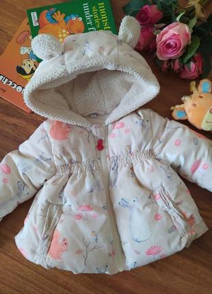 Шикарная демисезонная куртка на милашку 3-6 месяцев.