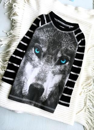 Лонгслив реглан волк