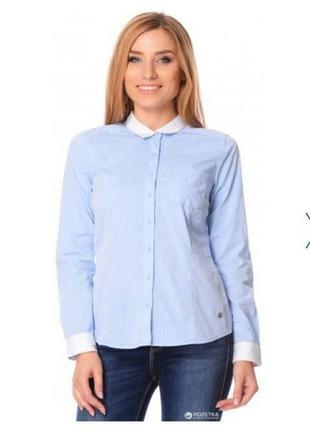Женская нежно голубая рубашка с белым воротником и манжетами colin's