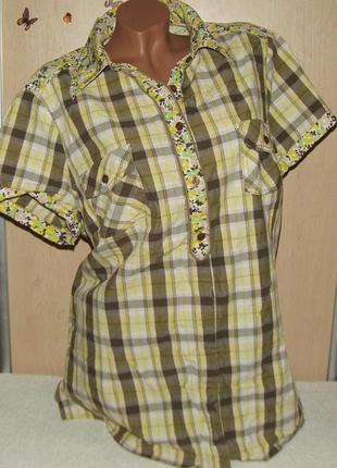 Клетчатая хлопковая рубашка miss etam, размер 50