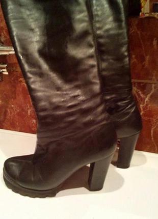 Осенние кожаные сапоги ботфорты