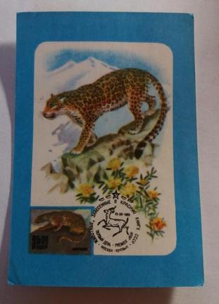 Календарь карманный календарик советский ссср срср леопард красная книга