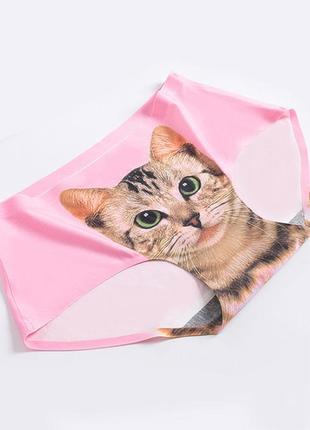 Розовый трусики с принтом котика