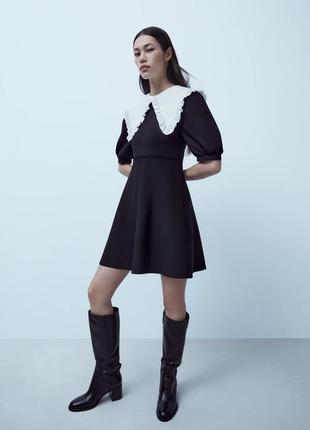 Zara трикотажное платье с контрастным воротником , m