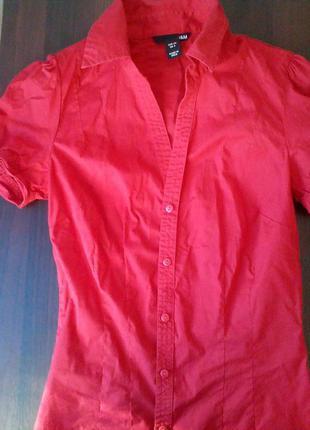 Рубашка від h&m