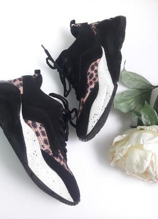 Кроссовки кожа на масивной подошве черные замша леопард принт от бренда  bianco😎2 фото
