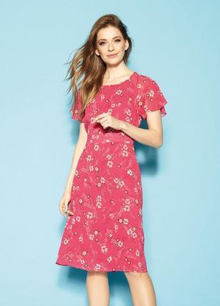 Платье до колена шифоновое с жаткой регланом подкладкой zaps janset 026 фуксия розовое