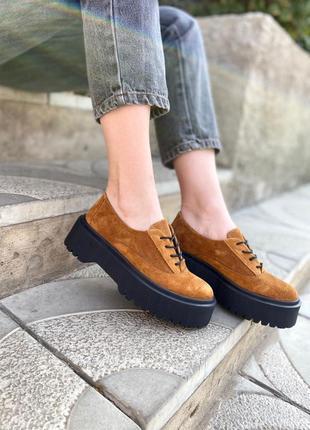 Замшевые стильные туфли брогги