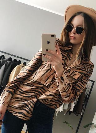 Рубашка с тигровым принтом