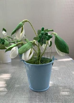 Подснежники букеты цветы декор интерьер в ведерке.