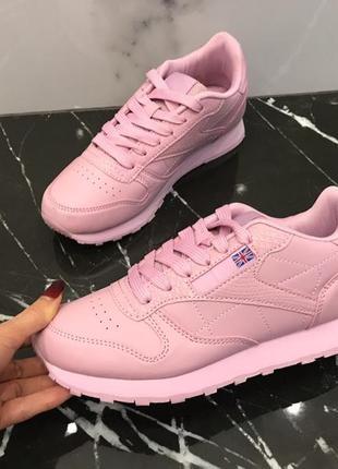 Кросівки пудра