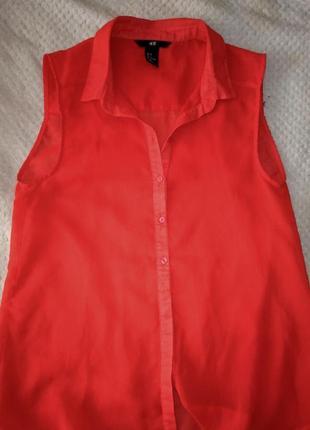 Полупрозрачная шифоновая блуза