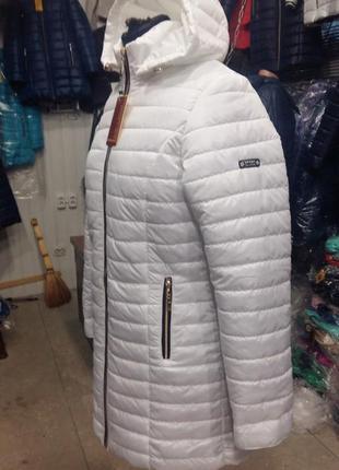 Куртки демисезон