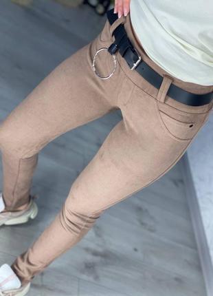 Женские брюки леггинсы лосины замша весна