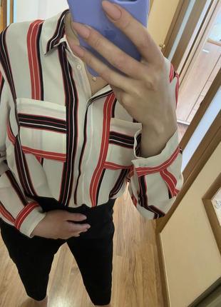 Рубашка , блуза в полоску1 фото