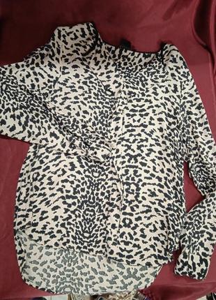 Легкая блузка, с длинными рукавами, принт леопард, легкая.