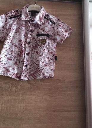 New  рубашка для мальчика произв турция