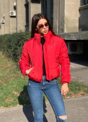 Красная куртка демисезонная весенняя