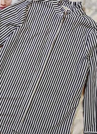 Рубашка  полосатая eur 36