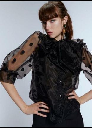 Шикарная блузка из органзы