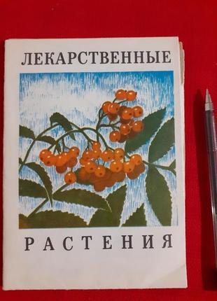 Ольхович в.м.лекарственные травы(наглядное пособие определитель)1974г