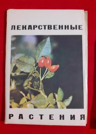 Ольхович в.м.лекарственные растения(наглядное пособие определитель)1976г