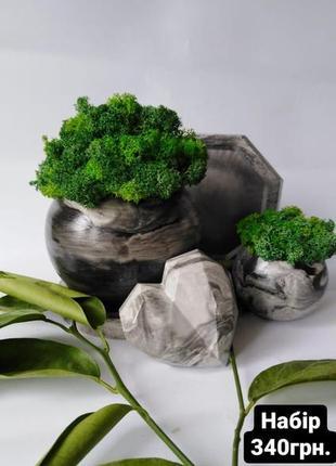 Глечик з мохом
