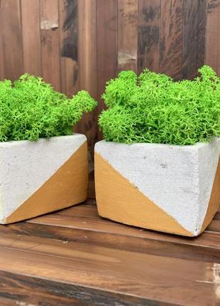 Два кашпо бетонні