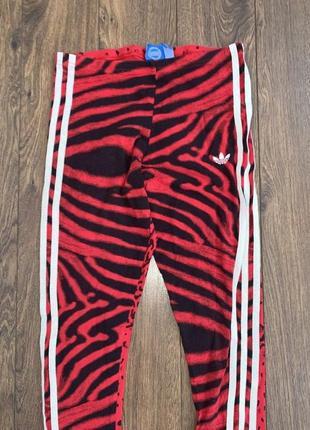 Эффектные стильные тигровые леопардовые красные спортивные лосины adidas xs/s