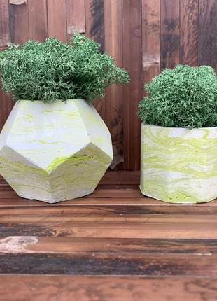 Набір з двох кашпо з темно-зеленим мохом