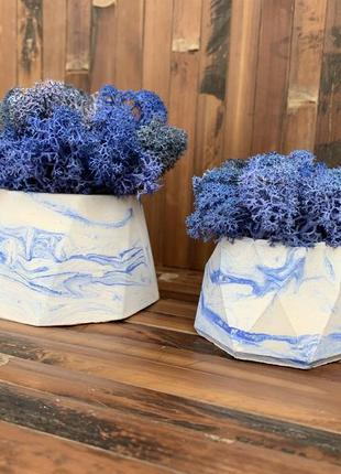 Два кашпо біло сині