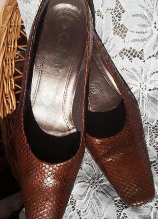 Gabor туфли кожа под змею