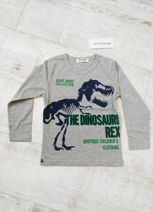 Лонгсливы с динозаврами9 фото
